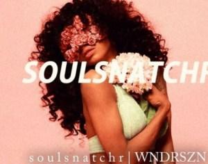 Wndrszn - Soulsnatchr